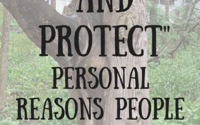 """To Heal and Protect"" Personal reasons people attend doula trainings. Text on tree background"