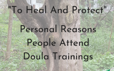 """To Heal and Protect"" Personal reasons people attend doula trainings. Text on tree background - png"